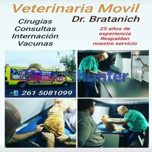 Tierklinik Veterinaria Movil ( Dr. BRATANICH )