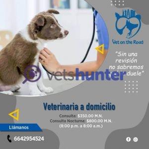 Clínica veterinaria Vet on the Road